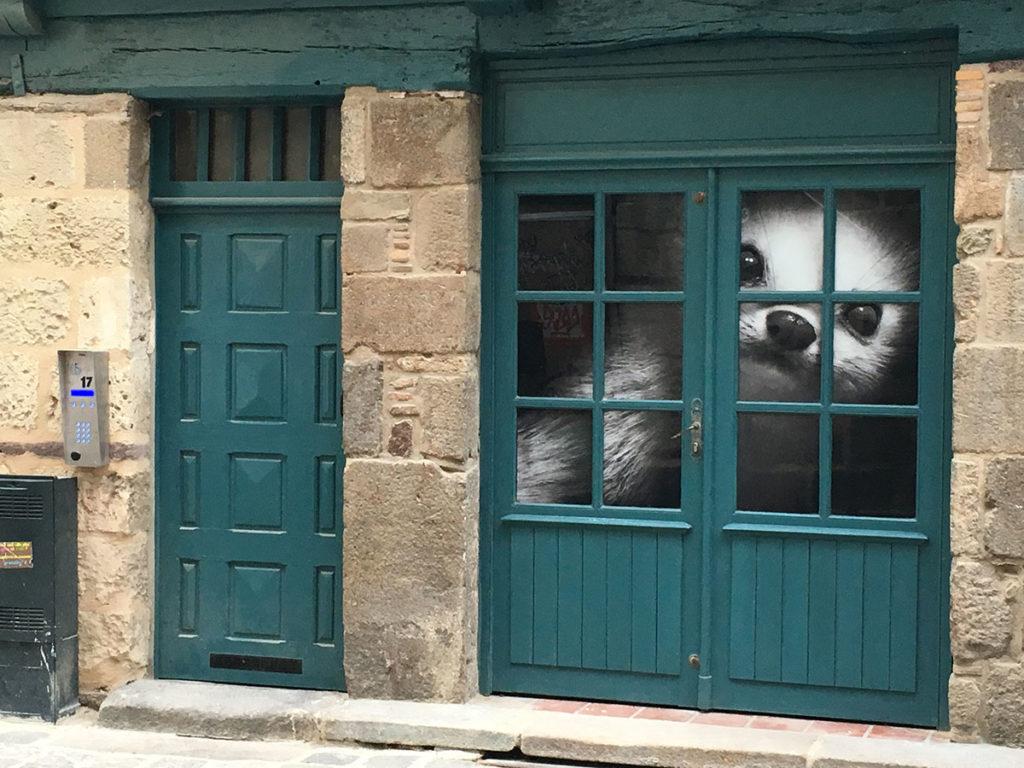 Les hermines Bonne Kozh dans le centre ancien de Rennes, rue Saint-Georges
