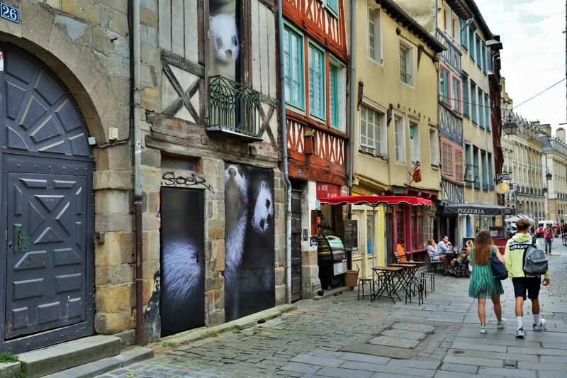 Les hermines Bonne Kozh, rue Saint Georges